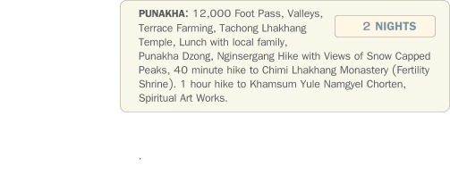 PUNAKHA: 12,000 Foot Pass, Valleys, Terrace Farming, Tachong Lhakhang Temple, Lunch with local family, Punakha Dzong, Nginsergang Hike with Views of Snow Capped Peaks, 40 minute hike to Chimi Lhakhang Monastery (Fertility Shrine). 1 hour hike to Khamsum Yule Namgyel Chorten, Spiritual Art Works.                 .   2 NIGHTS